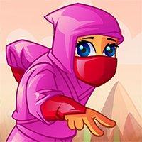 Ninja Treasure